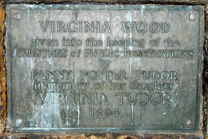 Virginia Wood Plaque